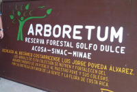 Arboretum and Reserva Forestal Golfo Dulce - Click to see full sized image