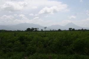04-countrysideFromBus.JPG (52933 bytes)